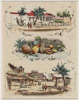 Meester_Cornelis_1875_-_1900