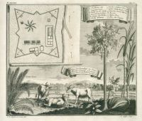 Post_Meester_Cornelis_Batavia_1744